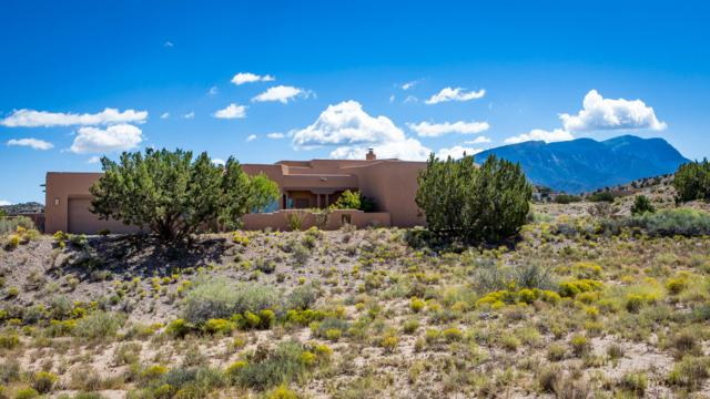 177 Camino Barranca, Placitas, NM 87043 (MLS #929033) :: Your Casa Team