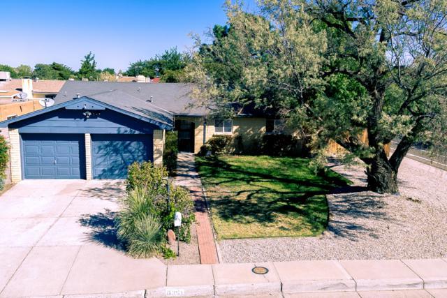6351 Christy Avenue NE, Albuquerque, NM 87109 (MLS #929073) :: Your Casa Team