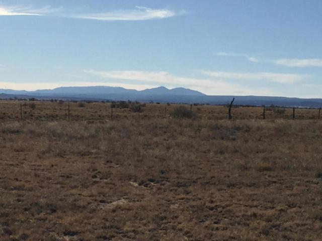 Morgan Street, Moriarty, NM 87035 (MLS #929088) :: Campbell & Campbell Real Estate Services