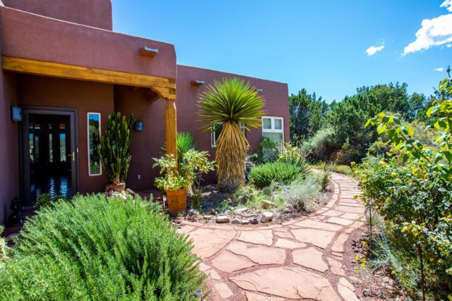10 Freeform Way, Placitas, NM 87043 (MLS #929101) :: Your Casa Team