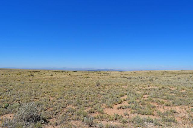 Lot 12 Rio Del Oro, Rio Communities, NM 87002 (MLS #929142) :: The Bigelow Team / Realty One of New Mexico