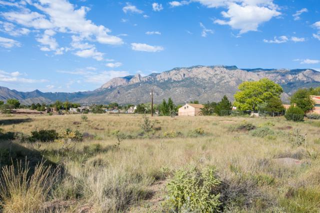 San Antonio NE, Albuquerque, NM 87122 (MLS #929148) :: Campbell & Campbell Real Estate Services