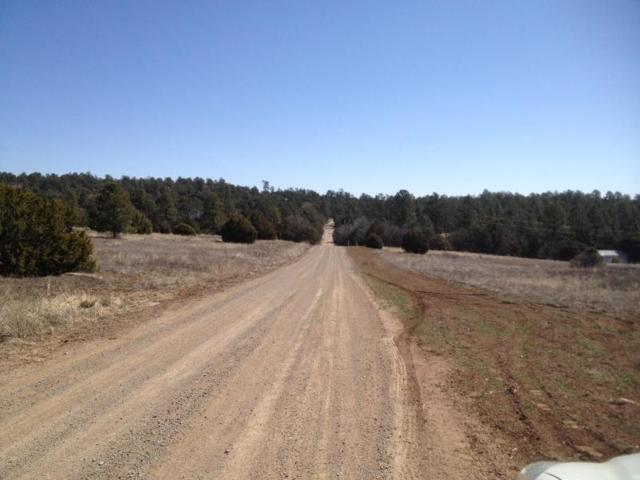 21 Meadowlark Road, Tijeras, NM 87059 (MLS #929175) :: Campbell & Campbell Real Estate Services