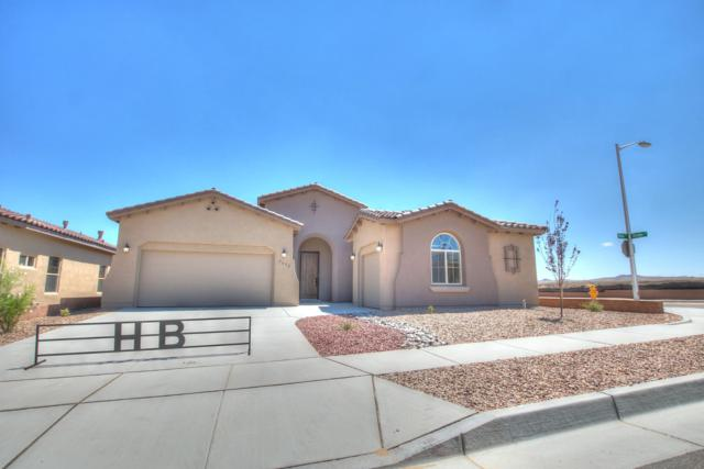 7432 Molas Road NW, Albuquerque, NM 87114 (MLS #929350) :: Campbell & Campbell Real Estate Services