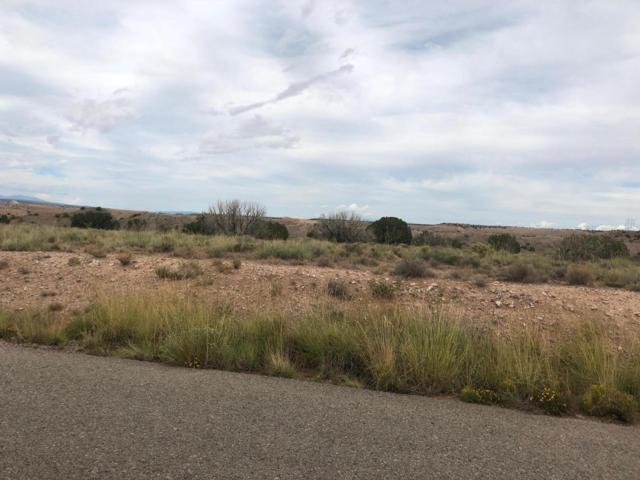 0 Brazos Trail, Placitas, NM 87043 (MLS #929351) :: Campbell & Campbell Real Estate Services