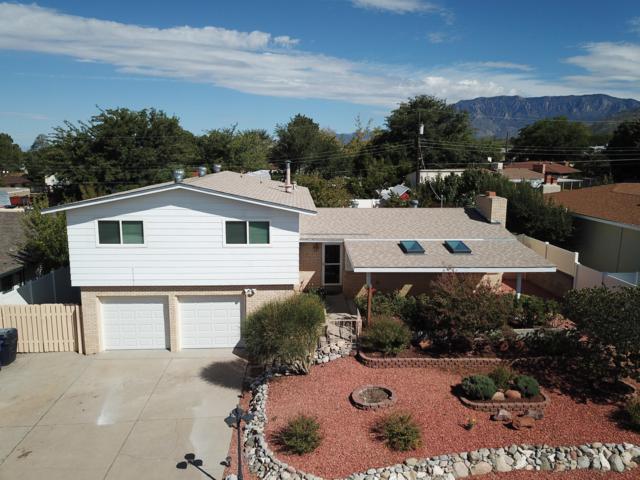 12317 Princess Jeanne Avenue NE, Albuquerque, NM 87112 (MLS #929505) :: The Stratmoen & Mesch Team