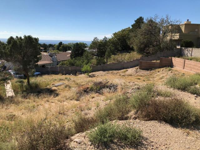 1428 Nemesia Place NE, Albuquerque, NM 87112 (MLS #929627) :: The Bigelow Team / Realty One of New Mexico