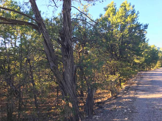 72 Big Dipper Road, Tijeras, NM 87059 (MLS #929723) :: The Stratmoen & Mesch Team