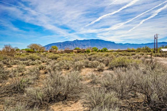 354 Silva Trail, Corrales, NM 87048 (MLS #929888) :: Campbell & Campbell Real Estate Services