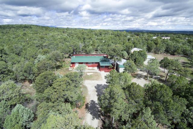 12 Nexus Lane, Tijeras, NM 87059 (MLS #929974) :: Campbell & Campbell Real Estate Services