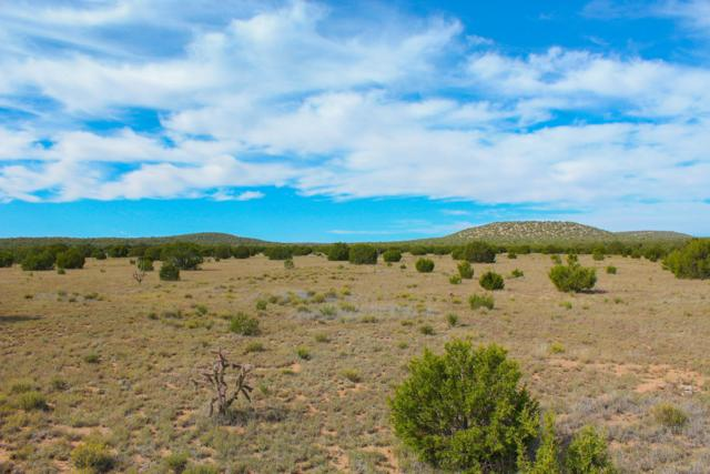 Dean Road, Moriarty, NM 87035 (MLS #930030) :: Campbell & Campbell Real Estate Services