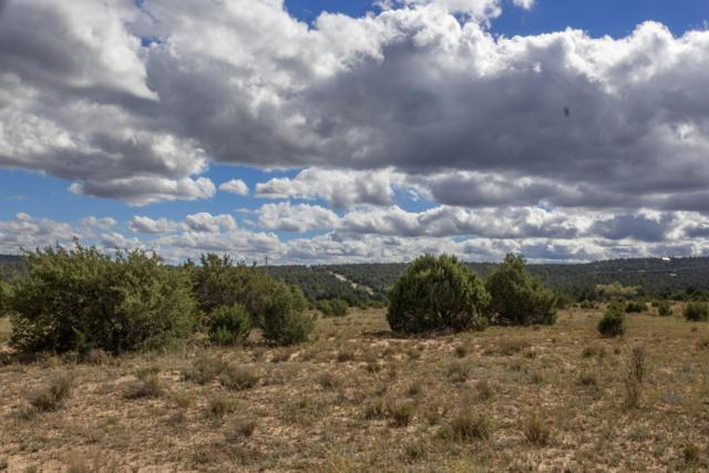 Highway 217, Tijeras, NM 87059 (MLS #930038) :: Campbell & Campbell Real Estate Services