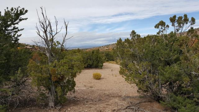Tres Amigos Road, Placitas, NM 87043 (MLS #930138) :: The Bigelow Team / Red Fox Realty