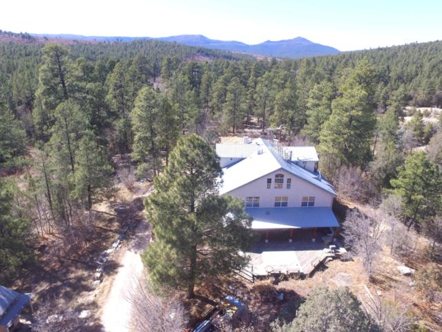 395 Lot32 4th Of July Rd, Tajique, NM 87016 (MLS #930163) :: Campbell & Campbell Real Estate Services