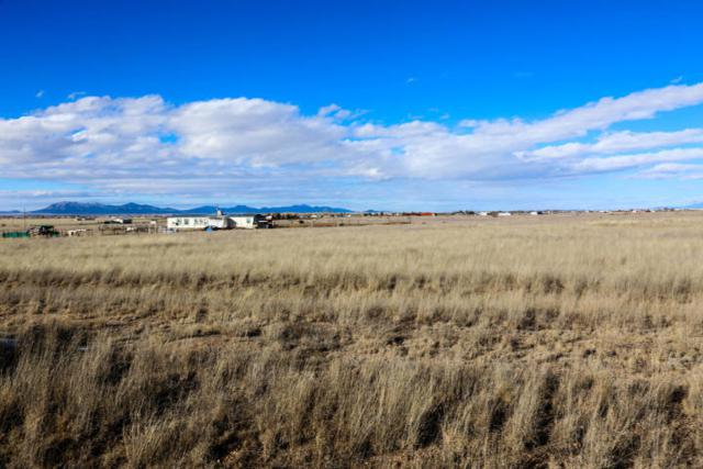 12 Lasso Loop, Moriarty, NM 87035 (MLS #930238) :: The Bigelow Team / Realty One of New Mexico