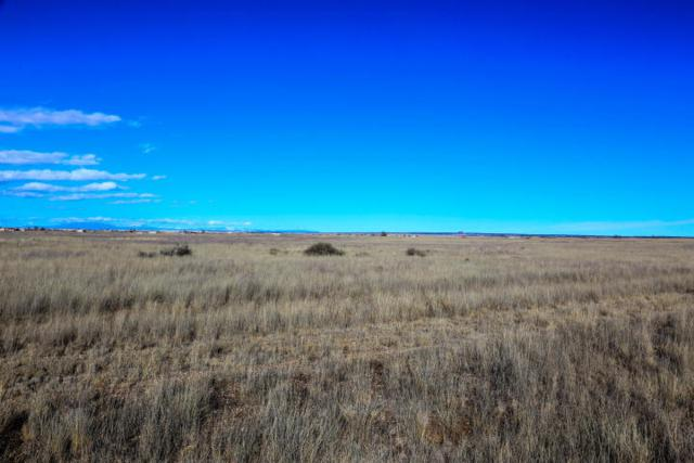 13 Lasso Loop, Moriarty, NM 87035 (MLS #930306) :: Campbell & Campbell Real Estate Services