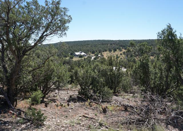 12 Sassy Lane, Edgewood, NM 87015 (MLS #930454) :: Campbell & Campbell Real Estate Services