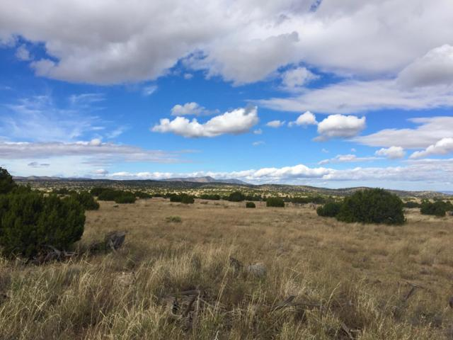 58 Pinon Springs Ranches, Magdalena, NM 87825 (MLS #930714) :: Keller Williams Realty