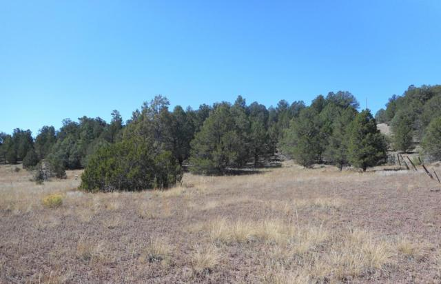 Lot 3 Sagebrush Road, Ramah, NM 87321 (MLS #930750) :: Campbell & Campbell Real Estate Services