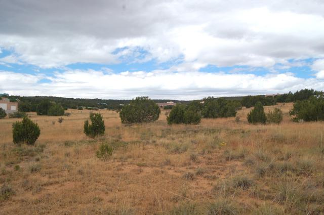 Vista Drive, Edgewood, NM 87015 (MLS #930769) :: Campbell & Campbell Real Estate Services