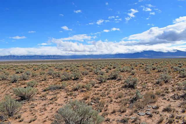 Lot 151 Rancho Rio Grande, Los Lunas, NM 87031 (MLS #930802) :: The Bigelow Team / Realty One of New Mexico