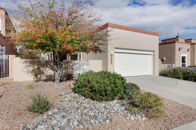 5711 Vulcan Vista Drive NE, Albuquerque, NM 87111 (MLS #930943) :: Your Casa Team