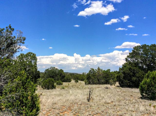 Lands Of Hanson, Edgewood, NM 87015 (MLS #930950) :: Campbell & Campbell Real Estate Services
