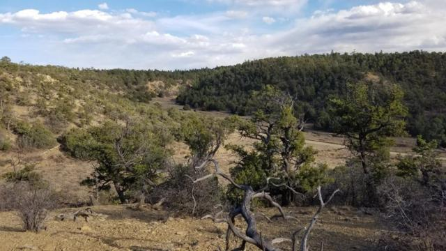 Ph2 Lot 13 Wild Horse Ranch, Pie Town, NM 87827 (MLS #931206) :: Campbell & Campbell Real Estate Services
