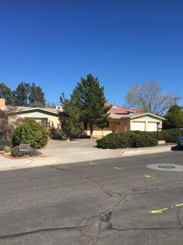 5127 Royene Drive NE, Albuquerque, NM 87110 (MLS #931343) :: Campbell & Campbell Real Estate Services