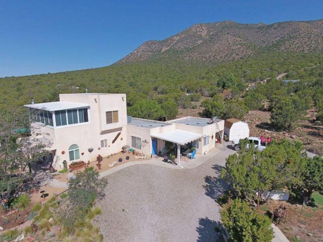 93 South Mountain Road, Edgewood, NM 87015 (MLS #931353) :: The Bigelow Team / Realty One of New Mexico