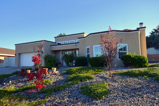 1617 Catron Avenue SE, Albuquerque, NM 87123 (MLS #931373) :: The Bigelow Team / Realty One of New Mexico