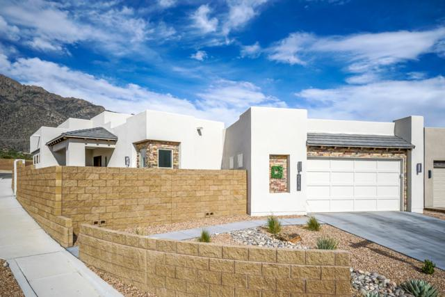 9514 Sandia Vista Drive NE, Albuquerque, NM 87122 (MLS #931714) :: Your Casa Team