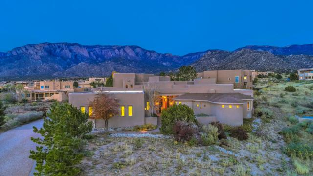 6020 Paper Flower Place NE, Albuquerque, NM 87111 (MLS #931875) :: The Bigelow Team / Realty One of New Mexico