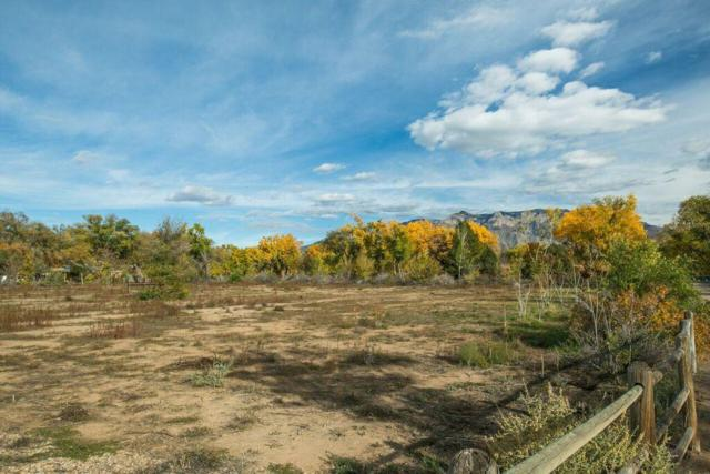 5910 Corrales Road NE, Corrales, NM 87048 (MLS #931927) :: The Bigelow Team / Realty One of New Mexico