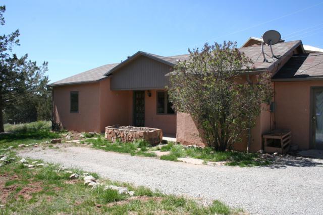 5 Corte De Canoncito Road, Cedar Crest, NM 87008 (MLS #931987) :: Campbell & Campbell Real Estate Services