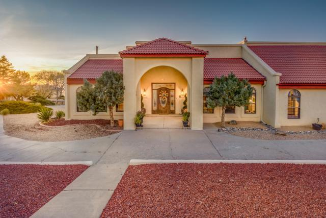 13464 Desert Hills Place NE, Albuquerque, NM 87111 (MLS #931990) :: The Bigelow Team / Realty One of New Mexico