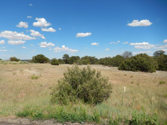15 Meadow Land Court, Tijeras, NM 87059 (MLS #932027) :: The Bigelow Team / Realty One of New Mexico