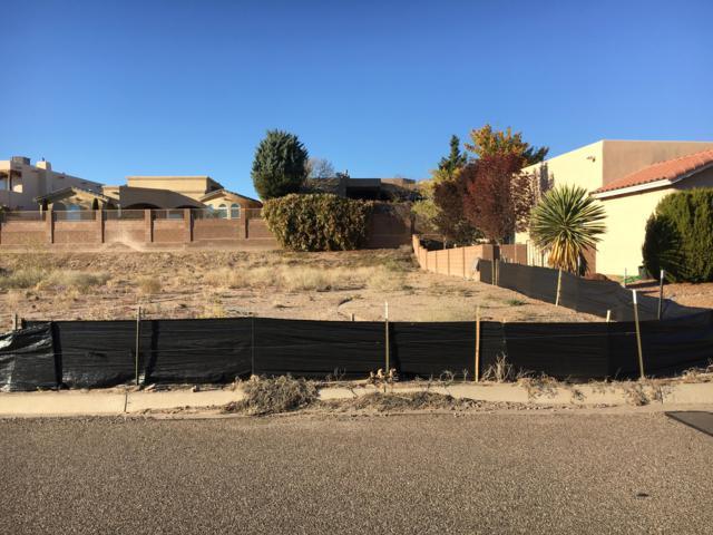 Tiffany Lane SE, Rio Rancho, NM 87124 (MLS #932055) :: The Stratmoen & Mesch Team