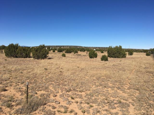 Silver Maple Avenue, Moriarty, NM 87035 (MLS #932104) :: The Bigelow Team / Red Fox Realty