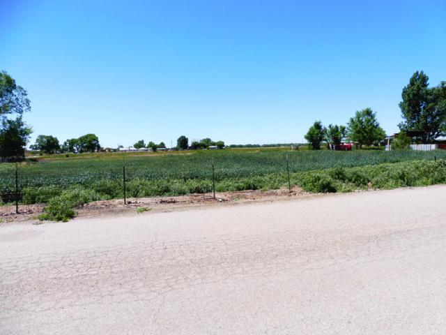 11 Ranchero Road, Los Lunas, NM 87031 (MLS #932148) :: Silesha & Company