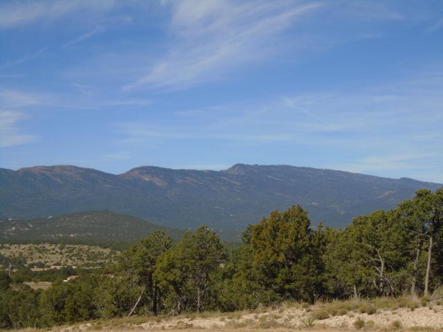 5 Prestige Drive, Tijeras, NM 87059 (MLS #932200) :: Keller Williams Realty