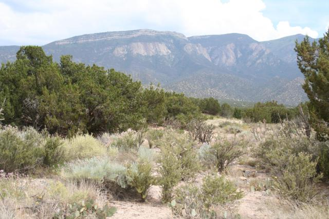 Apache Mesa Road, Placitas, NM 87043 (MLS #932293) :: Campbell & Campbell Real Estate Services