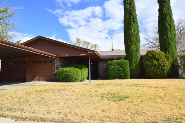 5300 Van Christopher Drive NE, Albuquerque, NM 87111 (MLS #932394) :: The Bigelow Team / Realty One of New Mexico