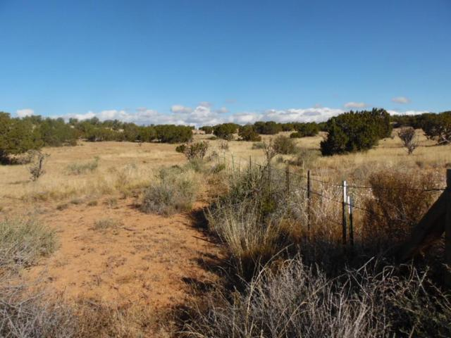None, Mountainair, NM 87036 (MLS #932427) :: Silesha & Company