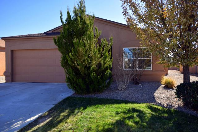 1028 Desert Paintbrush Loop NE, Rio Rancho, NM 87144 (MLS #932565) :: The Bigelow Team / Realty One of New Mexico