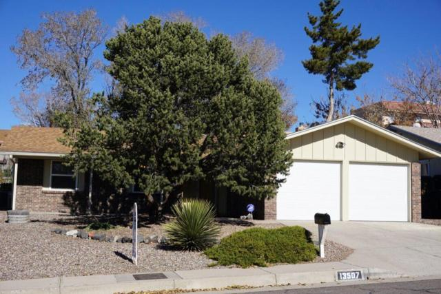 13507 Auburn Avenue NE, Albuquerque, NM 87112 (MLS #932661) :: The Bigelow Team / Realty One of New Mexico
