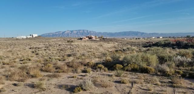 Afton Place NW, Rio Rancho, NM 87124 (MLS #932720) :: Your Casa Team