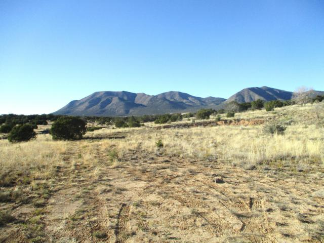 33 Bullsnake Trail, Edgewood, NM 87015 (MLS #932790) :: The Bigelow Team / Realty One of New Mexico