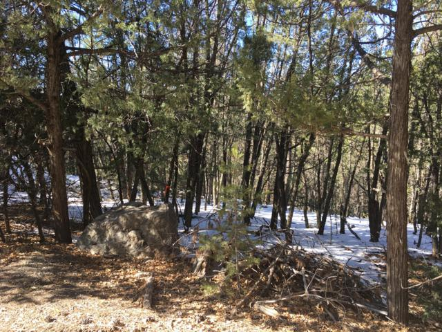 66 Big Dipper Road, Tijeras, NM 87059 (MLS #932831) :: The Stratmoen & Mesch Team