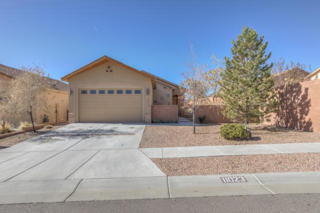 11023 Del Carmen Street NW, Albuquerque, NM 87114 (MLS #932867) :: The Bigelow Team / Realty One of New Mexico